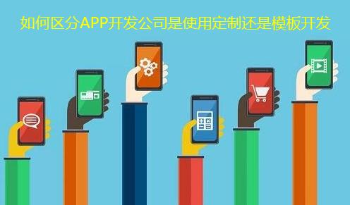 APP定制开发或APP模板开发
