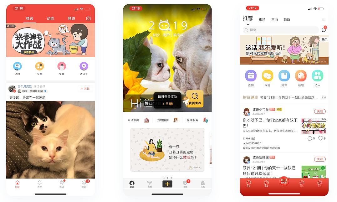 宠物APP开发取代传统宠物医疗行业成为用户首选